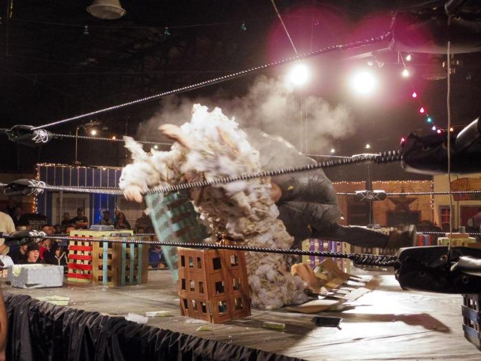 20160402-IMGP3382 Dusto Bunny vs Steam Powered Tentacle Boulder